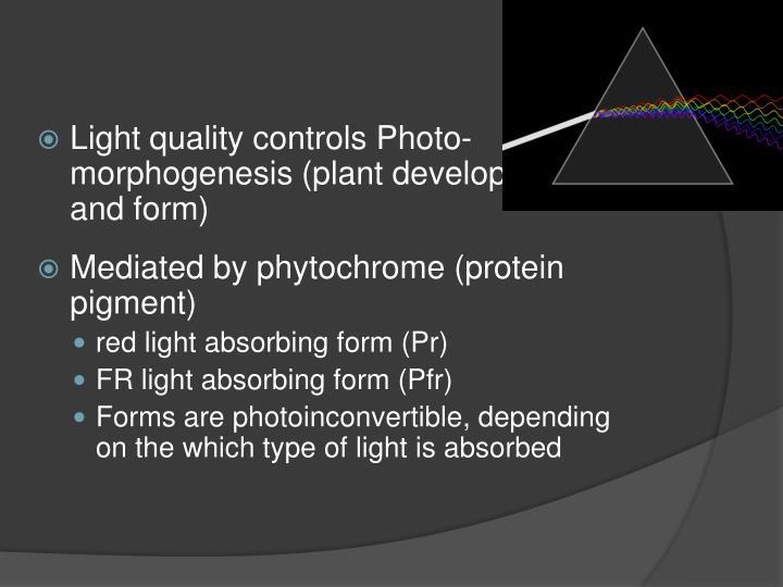 Light quality controls Photo-morphogenesis