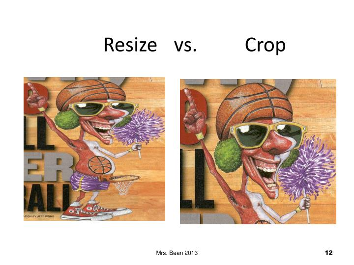 Resize vs. Crop