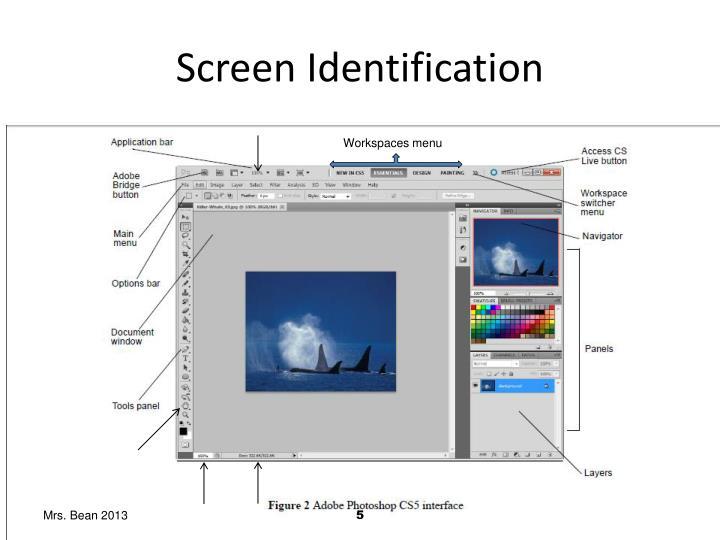 Screen Identification