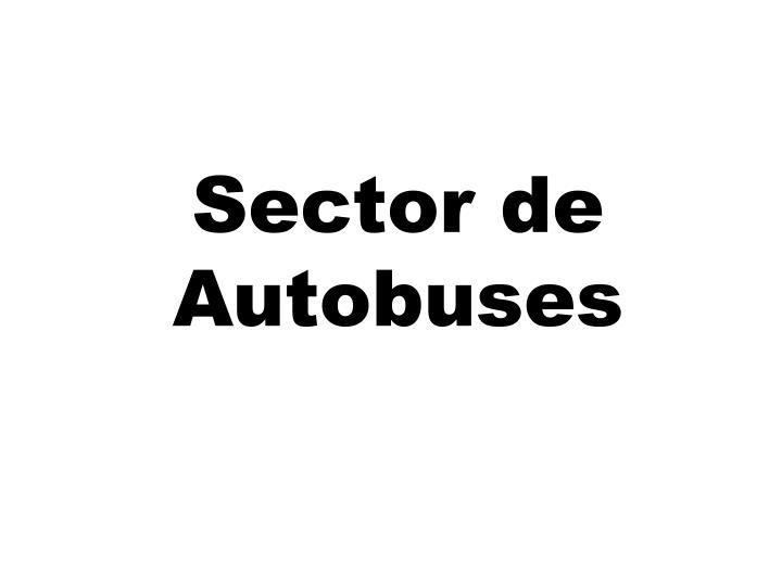 Sector de Autobuses