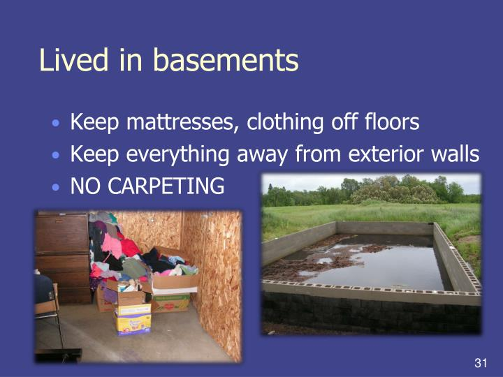 Lived in basements