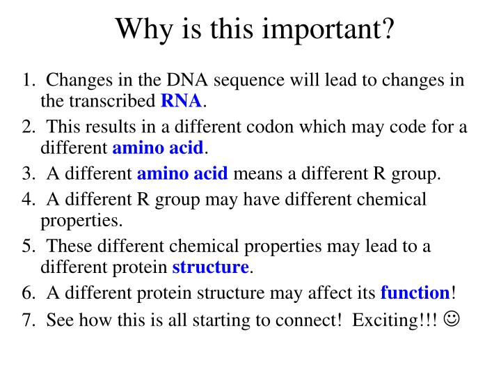 in general why might a change in amino acid sequence affect protein function For instance, because the genetic code is degenerate, if the particular codon gaa becomes gag, it will still code for the amino acid glutamate and the function of the cell will not change other substitution mutations can drastically affect cellular and organismal function.