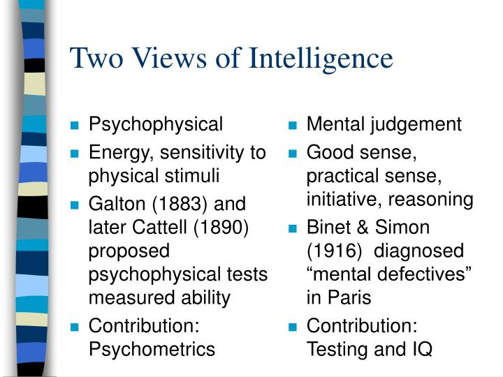 Two views of intelligence