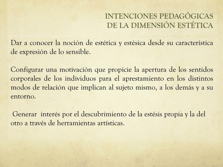 INTENCIONES PEDAGÓGICAS