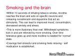 smoking and the brain