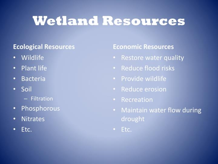 Wetland Resources