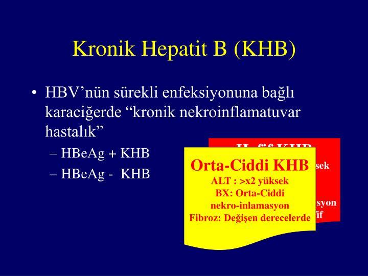 Kronik Hepatit B (KHB)