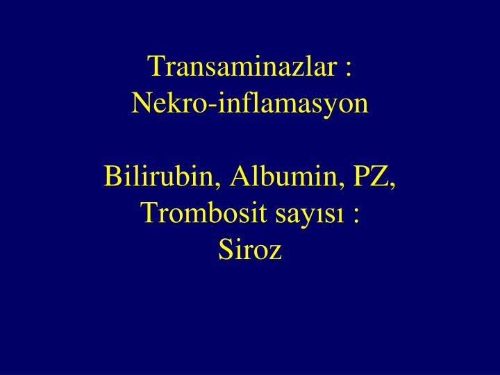 Transaminazlar :                  Nekro-inflamasyon