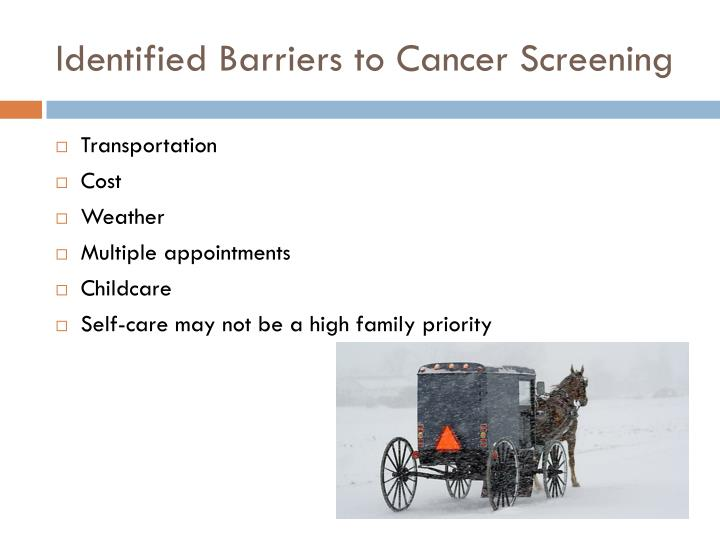 Identified Barriers