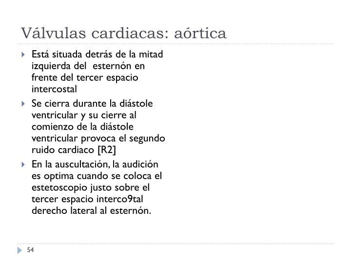 Válvulas cardiacas: aórtica