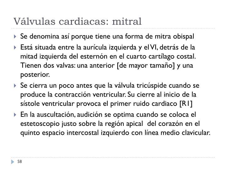 Válvulas cardiacas: mitral