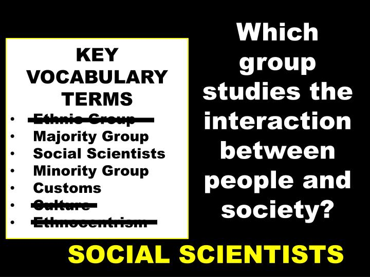 Which group studies the interaction between people and society?