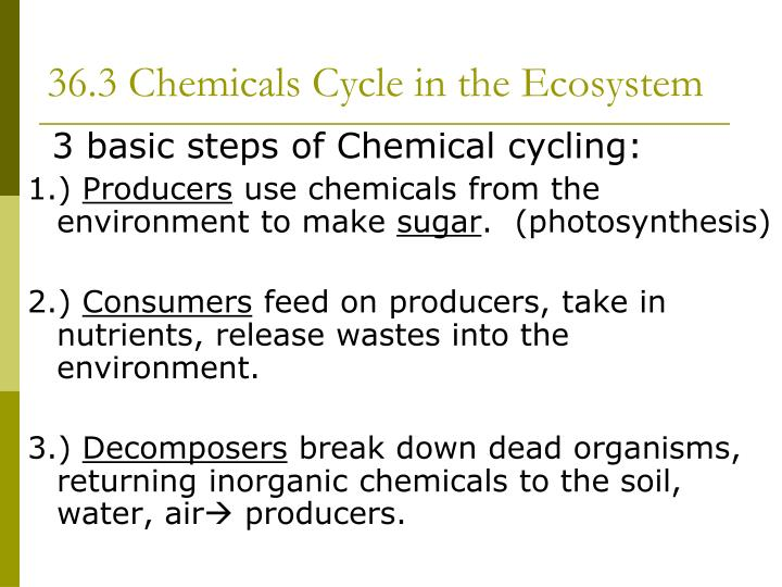 36.3 Chemicals Cycle in the Ecosystem