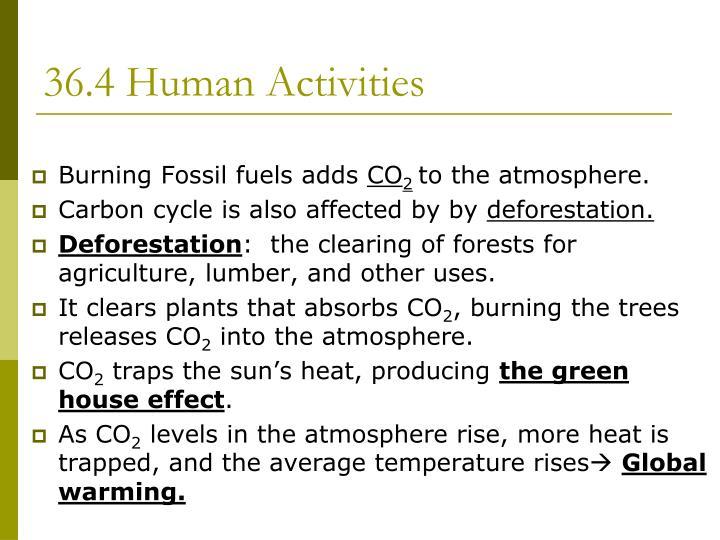 36.4 Human Activities