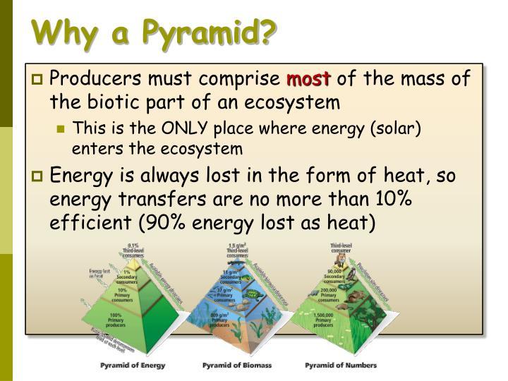 Why a Pyramid?