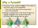why a pyramid