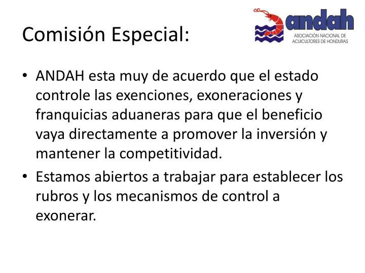 Comisión Especial: