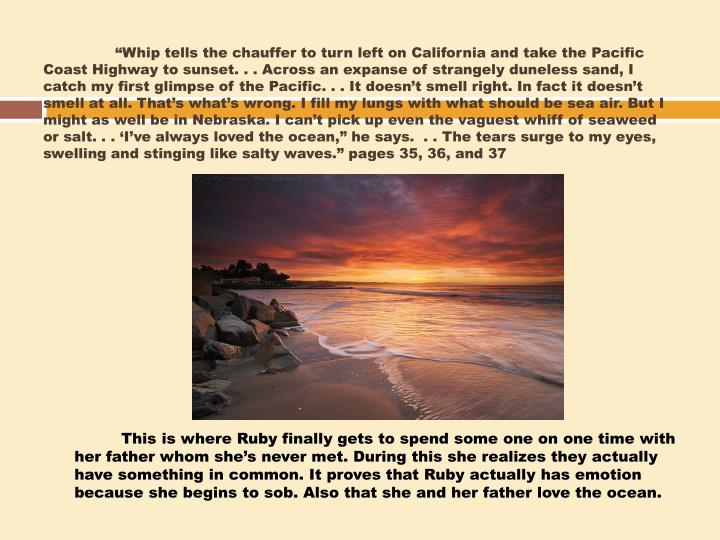 """Whip tells the chauffer to turn left on California and take the Pacific Coast Highway to sunset. . . Across an expanse of strangely"