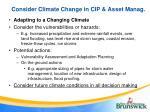 consider climate change in cip asset manag