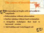 the causes of desertification