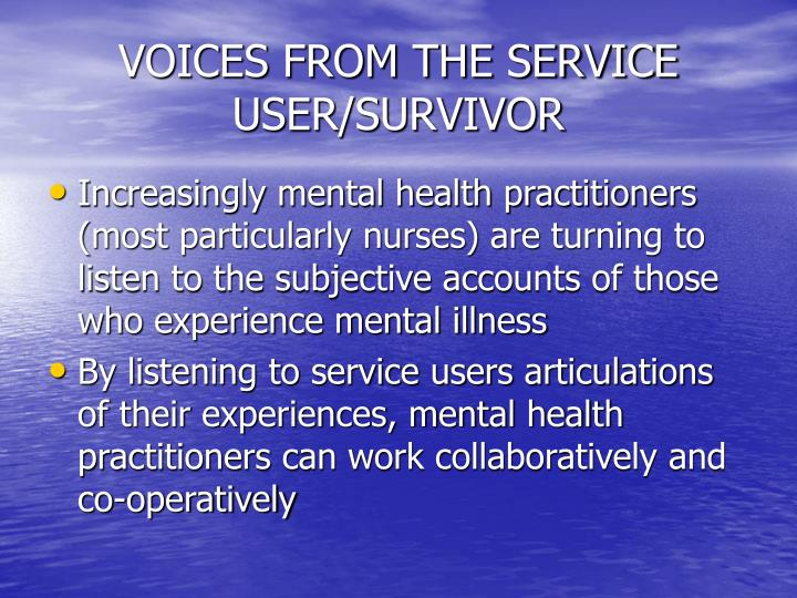 VOICES FROM THE SERVICE USER/SURVIVOR