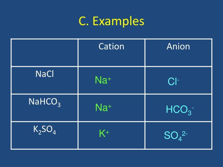 C. Examples