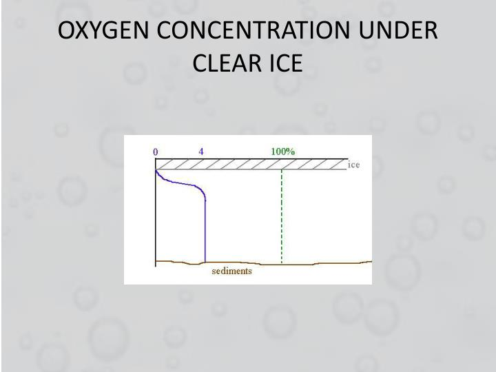OXYGEN CONCENTRATION UNDER CLEAR ICE