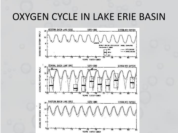 OXYGEN CYCLE IN LAKE ERIE BASIN
