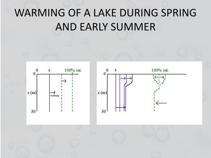 WARMING OF A LAKE DURING SPRING AND EARLY SUMMER