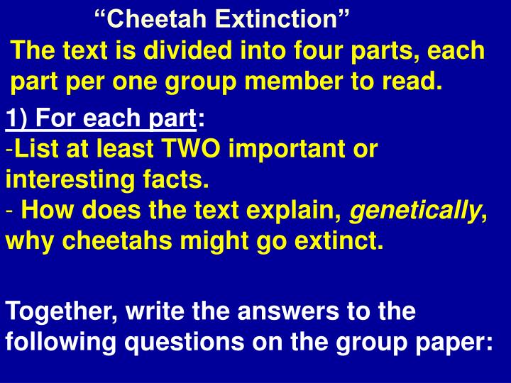 """Cheetah Extinction"""