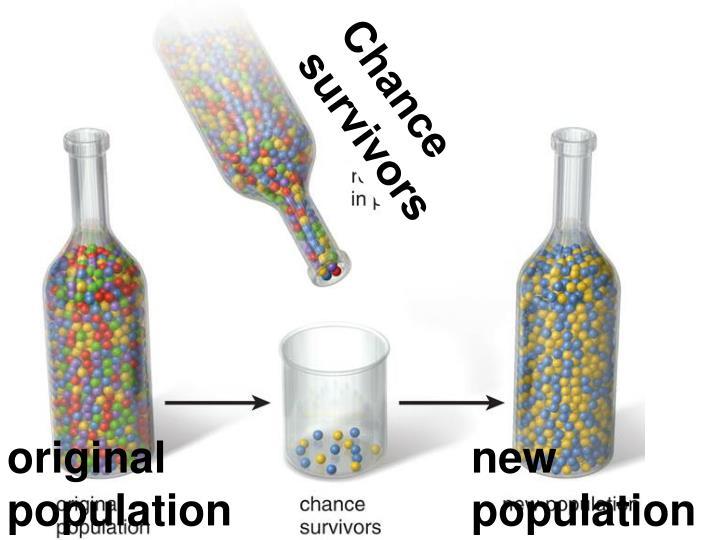 Chance survivors