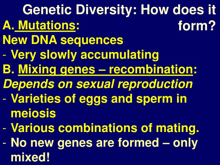 Genetic Diversity: How does it form?