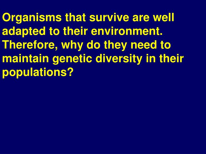 Organisms that survive are well adapted to their environment. Therefore, why do they need to maintain genetic diversity in their populations?