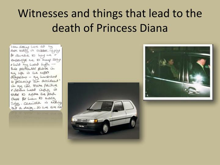 Witnesses and things that lead to the death of Princess Diana