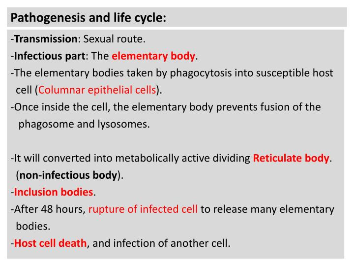 Pathogenesis and life cycle