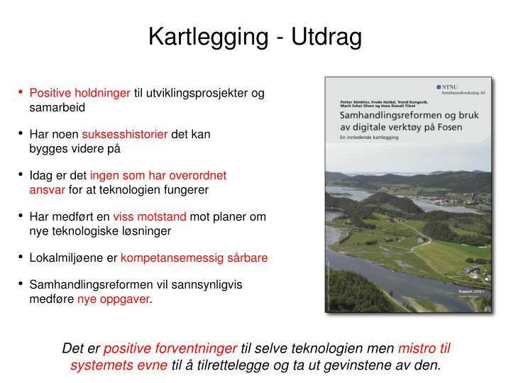 Kartlegging - Utdrag
