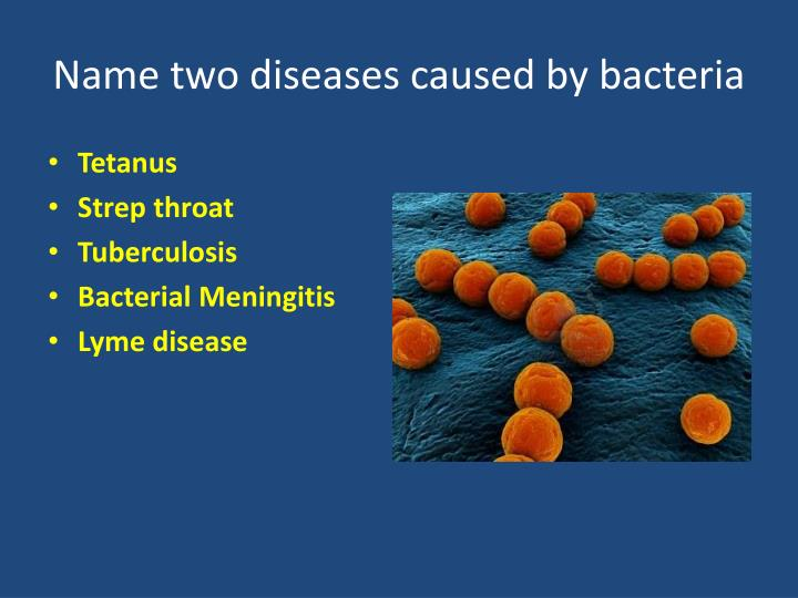 Name two diseases caused by bacteria