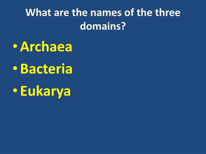What are the names of the three domains?