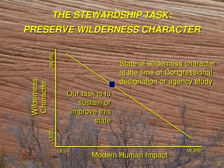 THE STEWARDSHIP TASK: