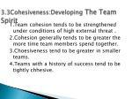 3 3cohesiveness developing the team spirit