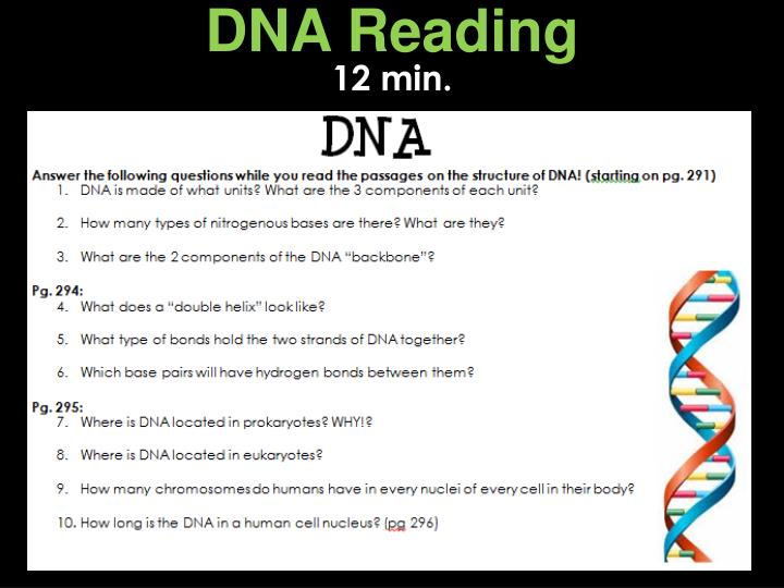 DNA Reading