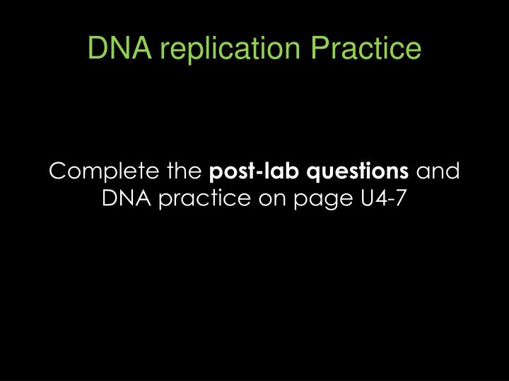 DNA replication Practice