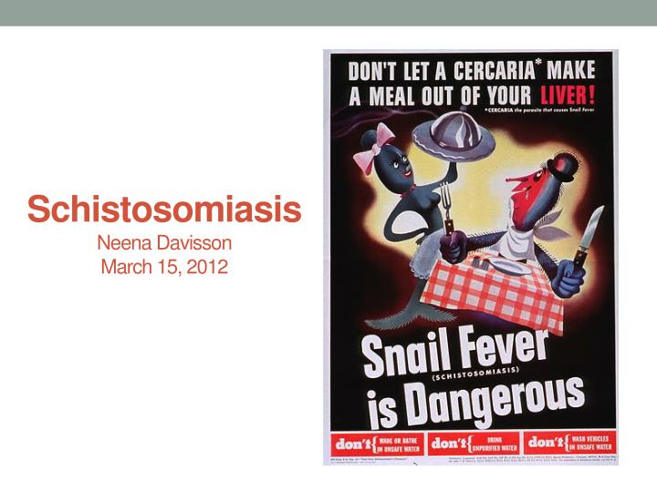 Schistosomiasis neena davisson march 15 2012