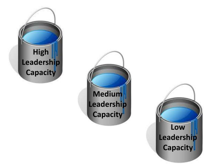 High Leadership Capacity