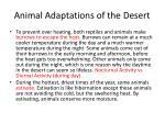 animal adaptations of the desert