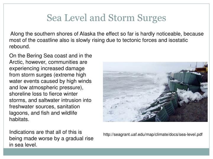 Sea Level and Storm Surges