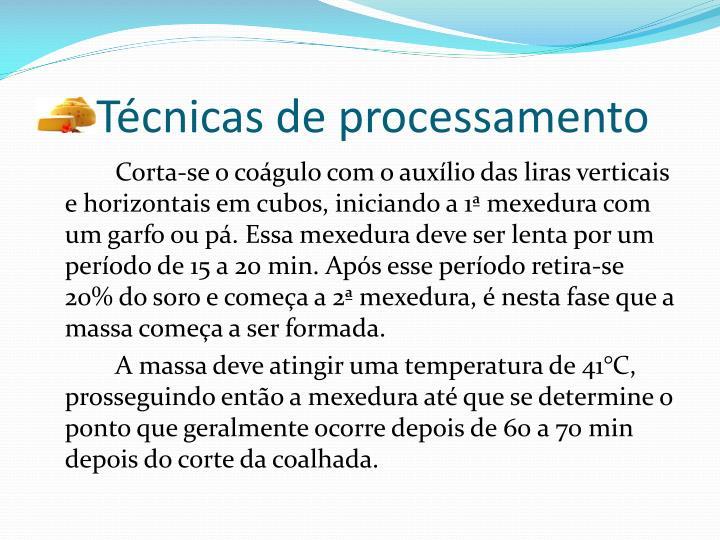 Técnicas de processamento
