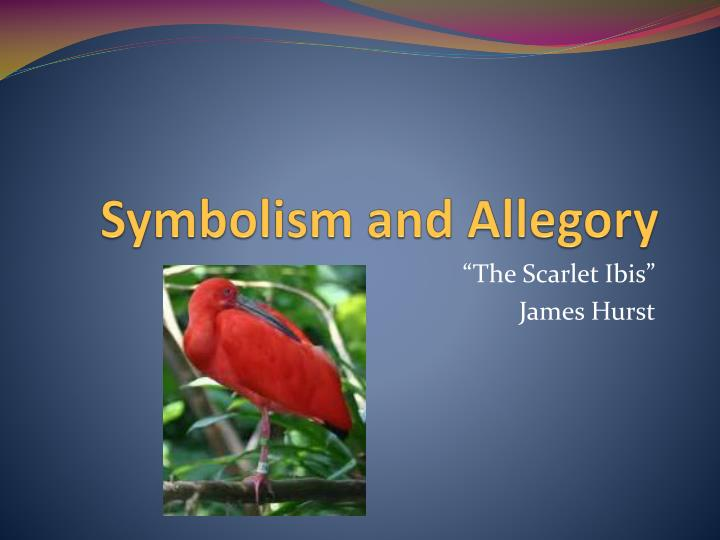 "essay about scarlet ibis In the short story, ""the scarlet ibis"", james hurst uses nature imagery to symbolize the narrator's mixed emotions the essay on the scarlet ibis 7."