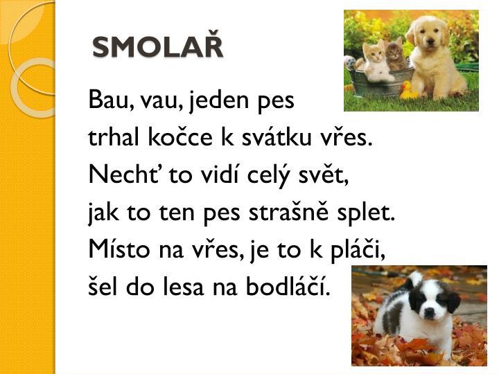 SMOLAŘ