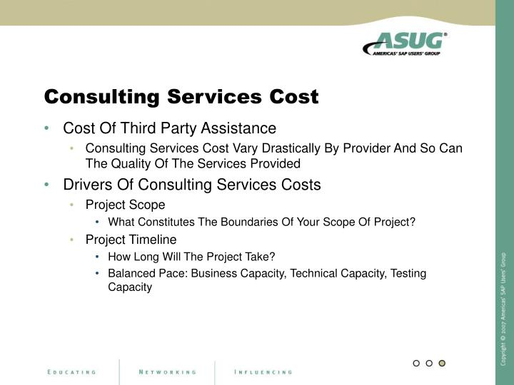 Consulting Services Cost